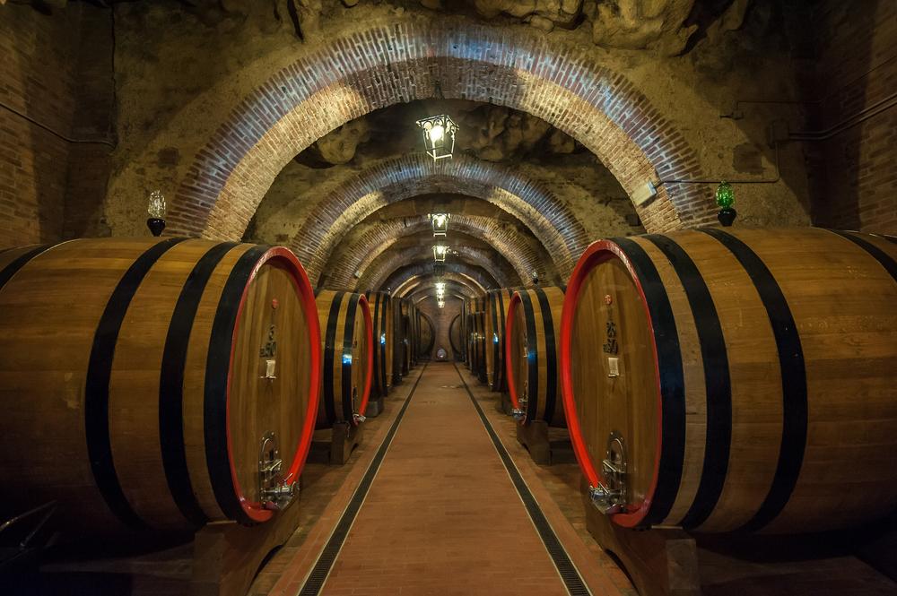Produzione di vino nelle cantine