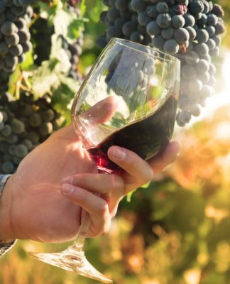 Vini naturali: una scelta consapevole
