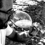 Biologica Stellino: il sapore autentico della Sicilia