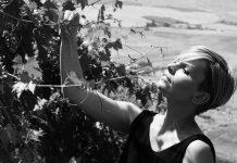 Azienda Agricola Vignacci: il sapore autentico toscano