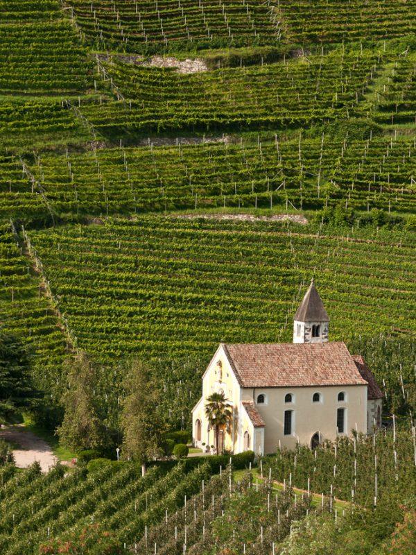 alto adige vini panorama_1179872185
